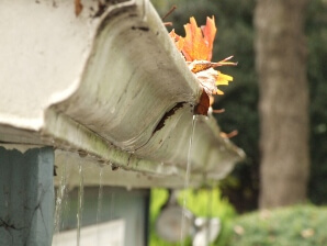 Virginia clogged gutters