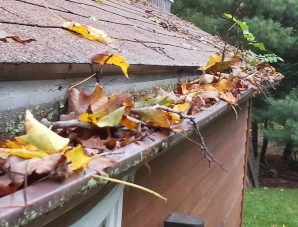 Greater Richmond clogged gutters