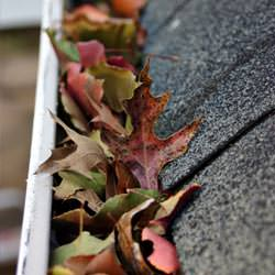 Clogged gutters filled with fall leaves  in Fort Eustis